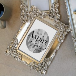 Ornate Photo Frame Champagne (8x10)
